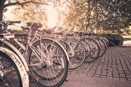 Bicycles parked in a rack with sunshine streaming behind them